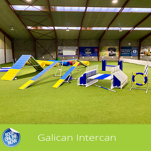 Book Galican Agility